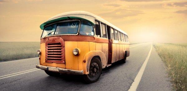 Два человека погибли в результате ДТП с участием грузовика и школьного автобуса в США