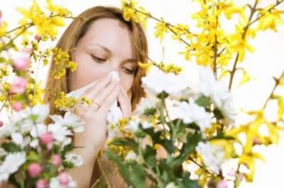 Названы самые эффективные народные средства борьбы с аллергией