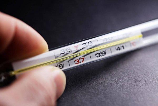 Ученые: Повышенная температура запускает иммунитет