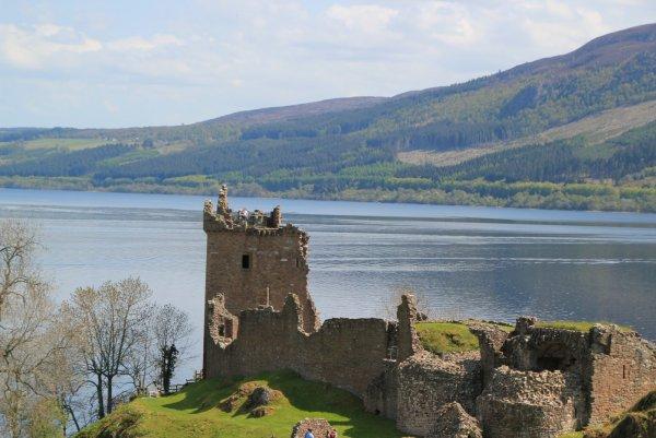 В Шотландии вновь увидели «то самое» Лох-Несское чудовище