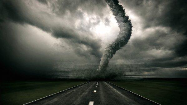 Ураганы и нашествие змей: Россия страдает от природных катаклизмов