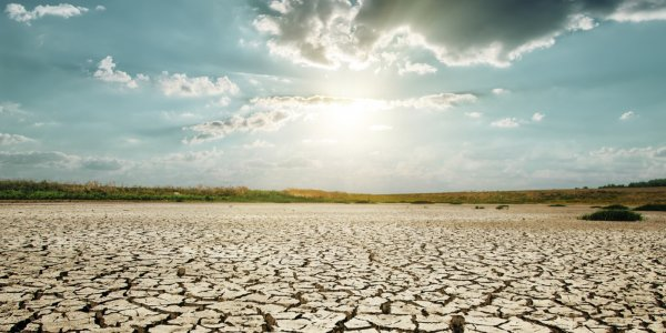 Учёные: Великобритания вскоре будет страдать от засухи