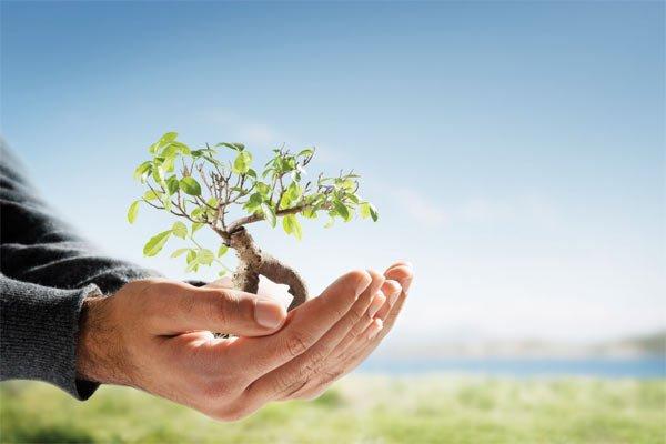 Эколого-просветительское мероприятие «Человек и природа» пройдет на территории парка Skazka