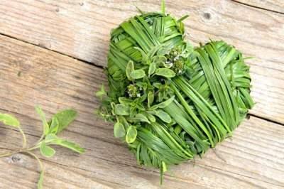 Эти лекарственные растения поддерживают здоровье сердца