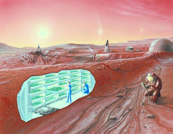 В SpaceX предложили выкопать туннели для проживания на Марсе