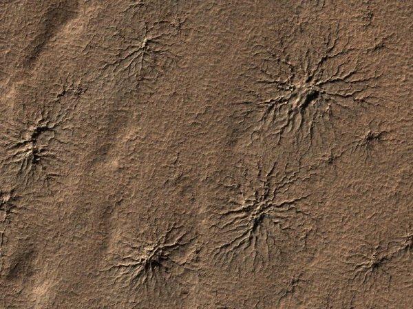 NASA начнет исследования «пауков» в ландшафте Марсе