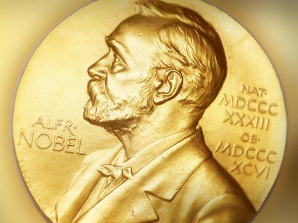 В 2019 году могут отменить Нобелевскую премию по литературе