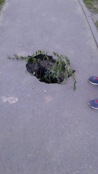 Возле Воронежского института искусств найден «задний проход планеты»