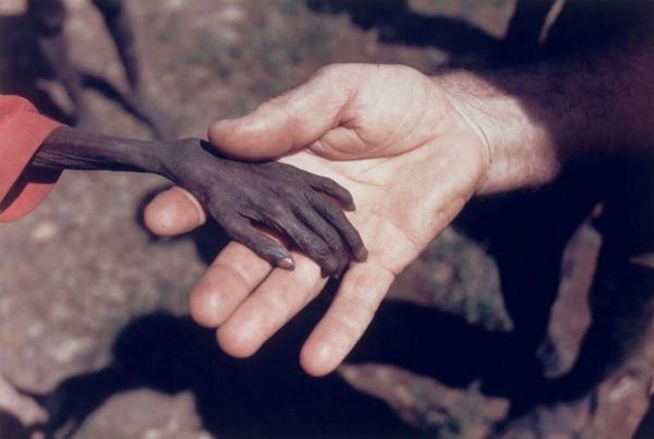 Климатическая война: После похолодания на Земле наступит всеобщий голод