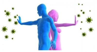 Медики назвали важнейший элемент в организме человека