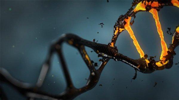 Ученые смогли создать первых управляемых ДНК-роботов