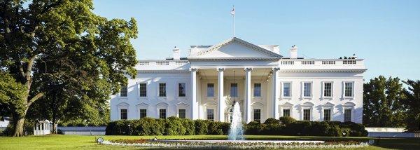 WSJ сообщает о подготовке встречи Трампа с Путиным в Белом доме
