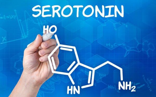 Ученые сообщают, что между терпением и серотонином есть тесная связь