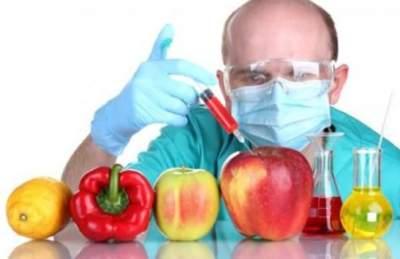 Ученые поставили точку в разговорах об опасности ГМО