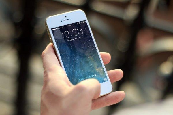 Мобильная платформа Saifish для чиновников заработает к концу 2018 года