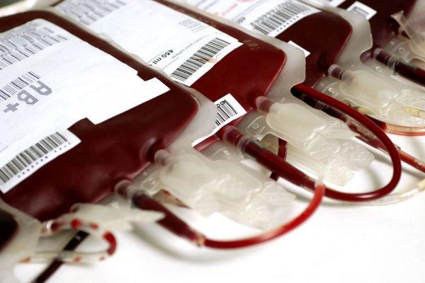 Врачи могут заменить естественную кровь органическим порошком
