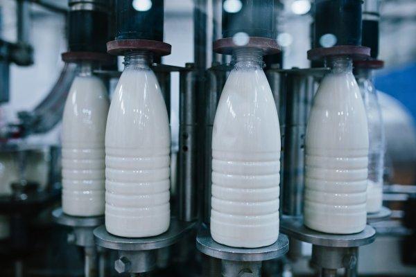 Россия и Белоруссия намерены снять ограничения на поставки молока