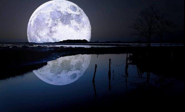 Из-за астронавтов на Луне произошло потепление