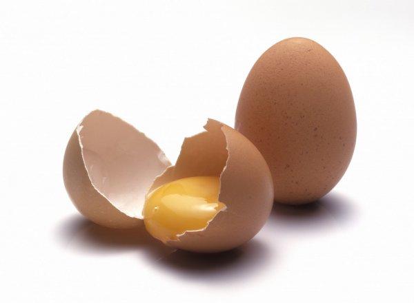 Употребление яиц каждый день полезно для здоровья