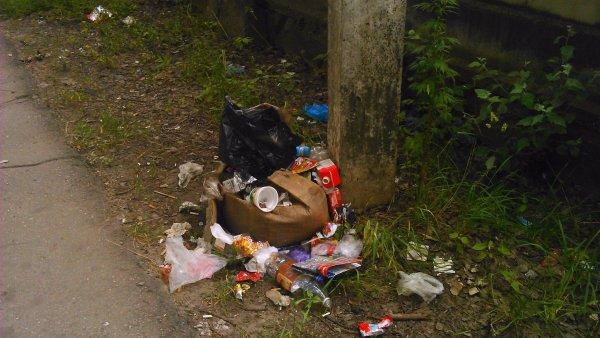 Жители Воронежа определили, кто сделал их город таким грязным