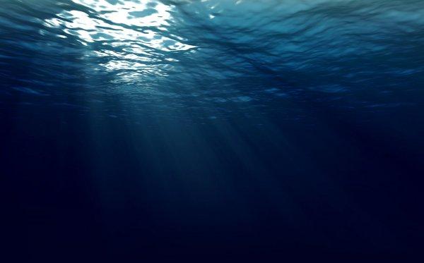 Исследователи: Люди могут дышать под водой