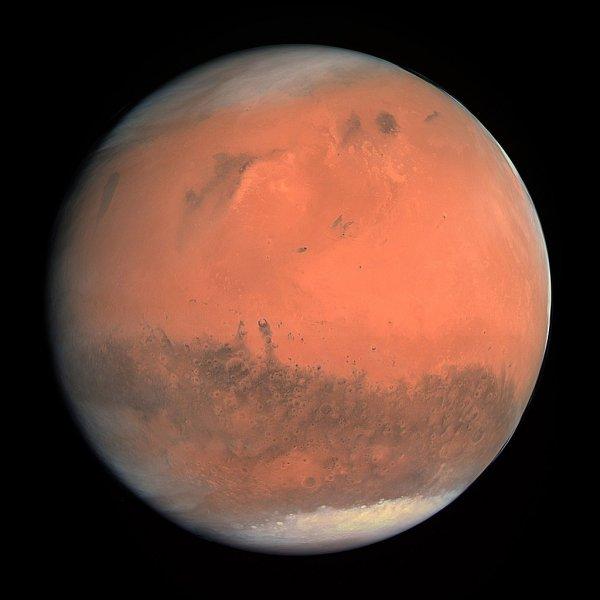 Уфолог обнаружил живого хлопающего глазами пришельца на Марсе