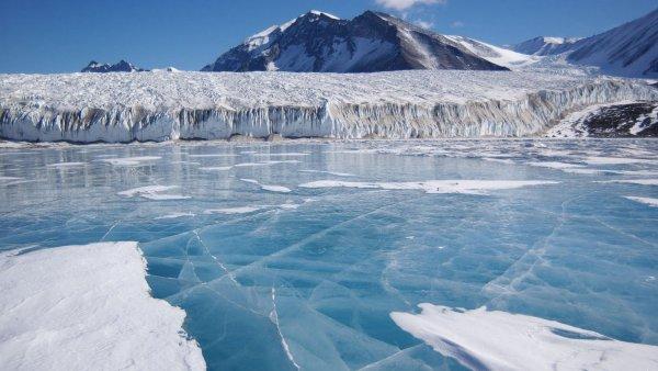 Льды на Антарктиде тают всё быстрее - Ученые