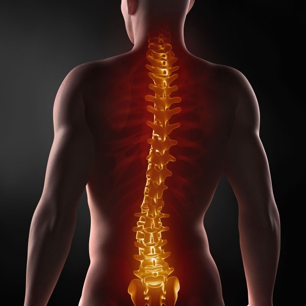 Ученые: Генная терапия может вылечить паралич конечностей