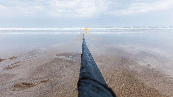 Подводные кабели могут оповещать о надвигающихся цунами и землетрясениях