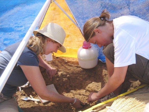Окаменелую муху возрастом 90 миллионов лет нашли в Мексике