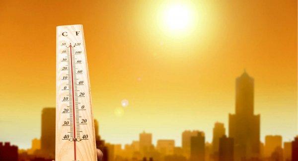 Врачи рассказали, как проще пережить жару