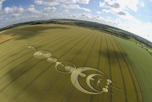 В Краснодарском крае обнаружены странные пиктограммы на полях