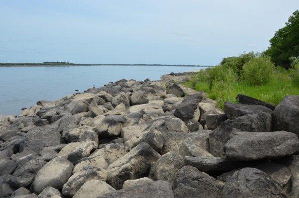 В Хабаровском крае ученые обнаружили древние петроглифы