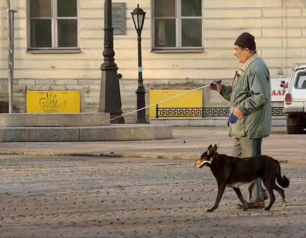 За отказ пустить инвалида с собакой кафе на Камчатке оштрафовали