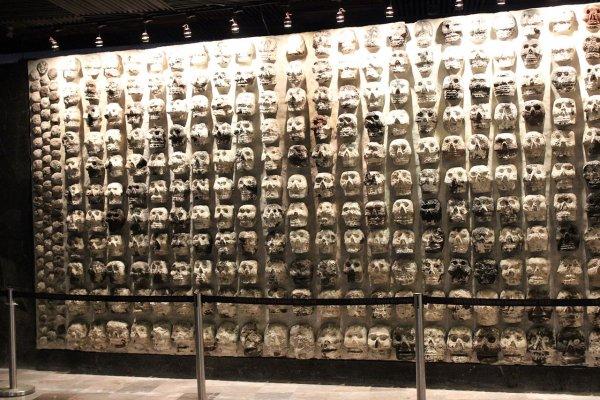 Эксперты рассказали, как ацтеки строили башни из черепов