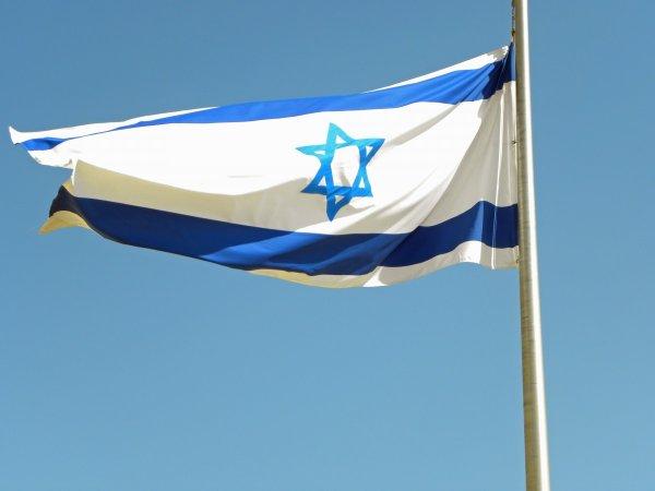 Взобравшуюся на израильский флаг «голую» активистку затравили в Сети