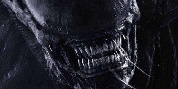 Учёные обнаружили ос, похожих на монстров из фильма «Чужие»
