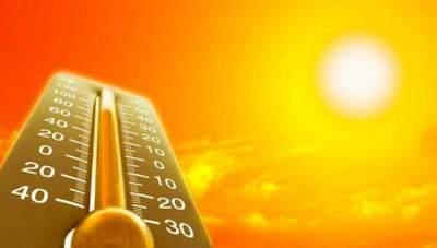 Как с минимальными для здоровья потерями перенести жаркое лето