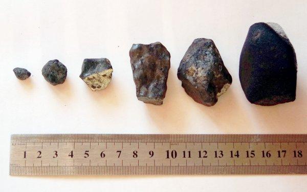 Сотрудники УрФУ доставили кусочки метеорита из Липецкой области в Екатеринбург