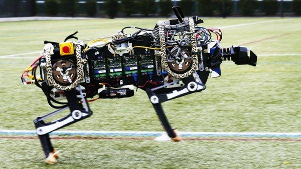 Ученые научили робота-гепарда преодолевать препятствия вслепую