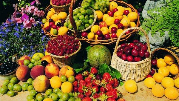 Ученые: Многие фрукты и ягоды вредны для организма