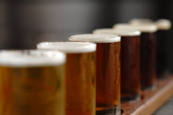 Эксперты: нелюбовь к пиву является последствием эволюции