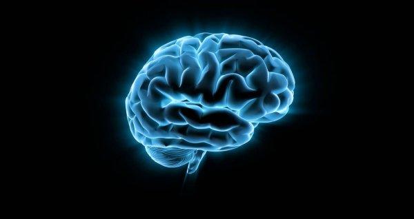 Ученые из США смогли определить уровень повреждения мозга с помощью анализа крови