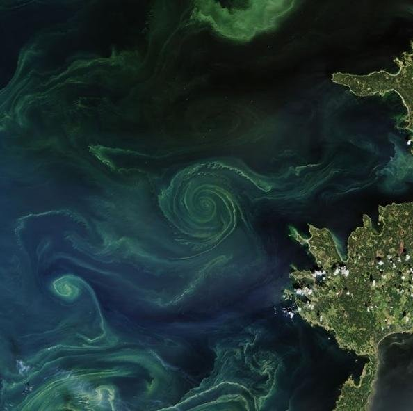 NASA опубликовало фото Балтийского моря