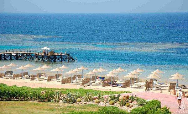 За критику египетской власти туристы теперь могут получить срок в восемь лет
