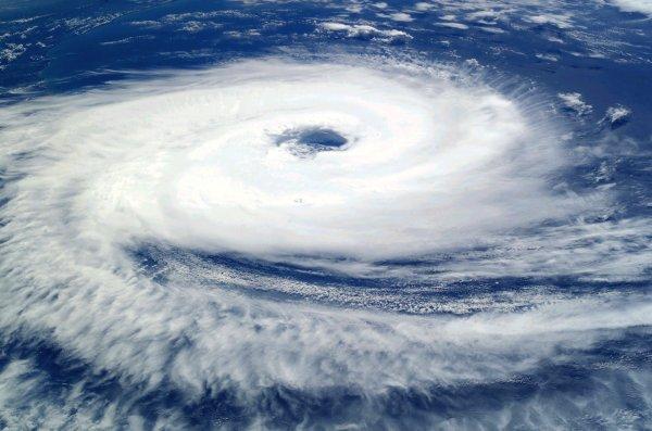 Более 300 авиарейсов отменили в Японии из-за тайфуна «Джондари»