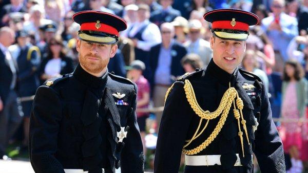 Принцы Уильям и Гарри рассказали, что хранят после смерти принцессы Дианы