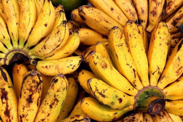 «Свежий банан каждый день»: В Южной Корее решили назойливую проблему