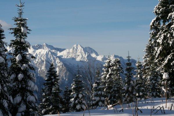 В Сочинских горах в районе Красной Поляны выпал первый снег