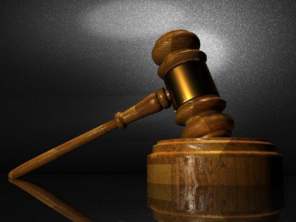 Суд Брюсселя заставляет короля Бельгии пройти тест на отцовство